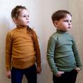 Водолазка детская для мальчика и девочки   (ВД-12 рубчик без начеса)