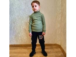Штаны для мальчика  ( ШТ-01 начес одн. )