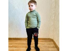 Штаны для мальчика  ( ШТ-06 начес одн. )